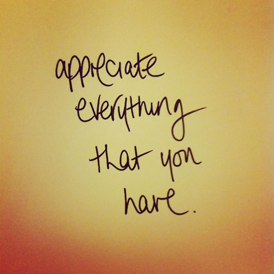 appreciate-everything-that-you-have-20130124395
