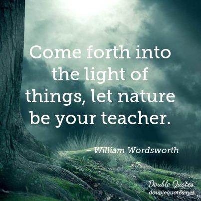 come-forth-into-the-light-of-things-let-nature-be-your-teacher-403x403-nk2191
